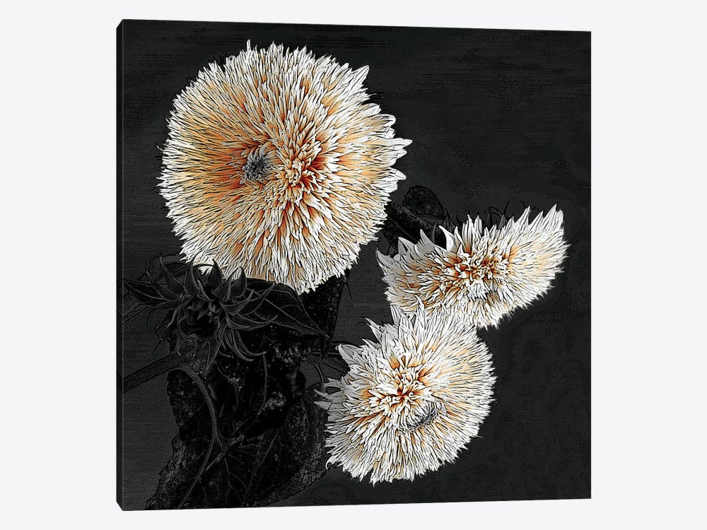 Sunflowers II by Shelley Lake 1-piece Canvas Art
