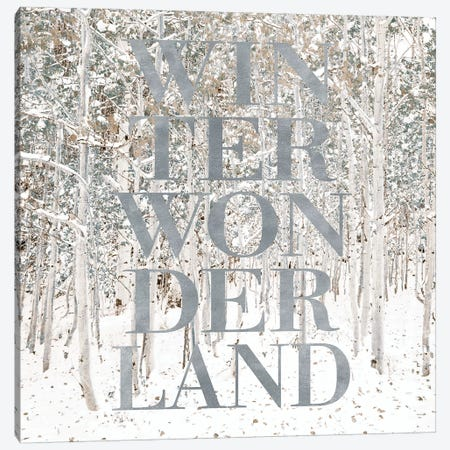 Winter Wonderland Canvas Print #SLK43} by Shelley Lake Canvas Wall Art