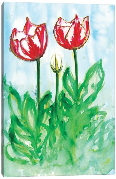 Tulips In The Wind Watercolor By Soniastella Canvas Art Print