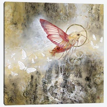 Moth Canvas Print #SLW110} by Stephanie Law Canvas Art Print