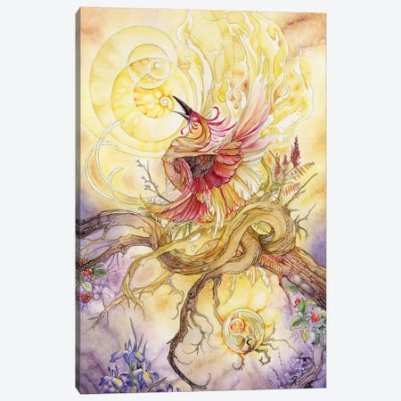 Phoenix II Canvas Print #SLW120} by Stephanie Law Canvas Wall Art