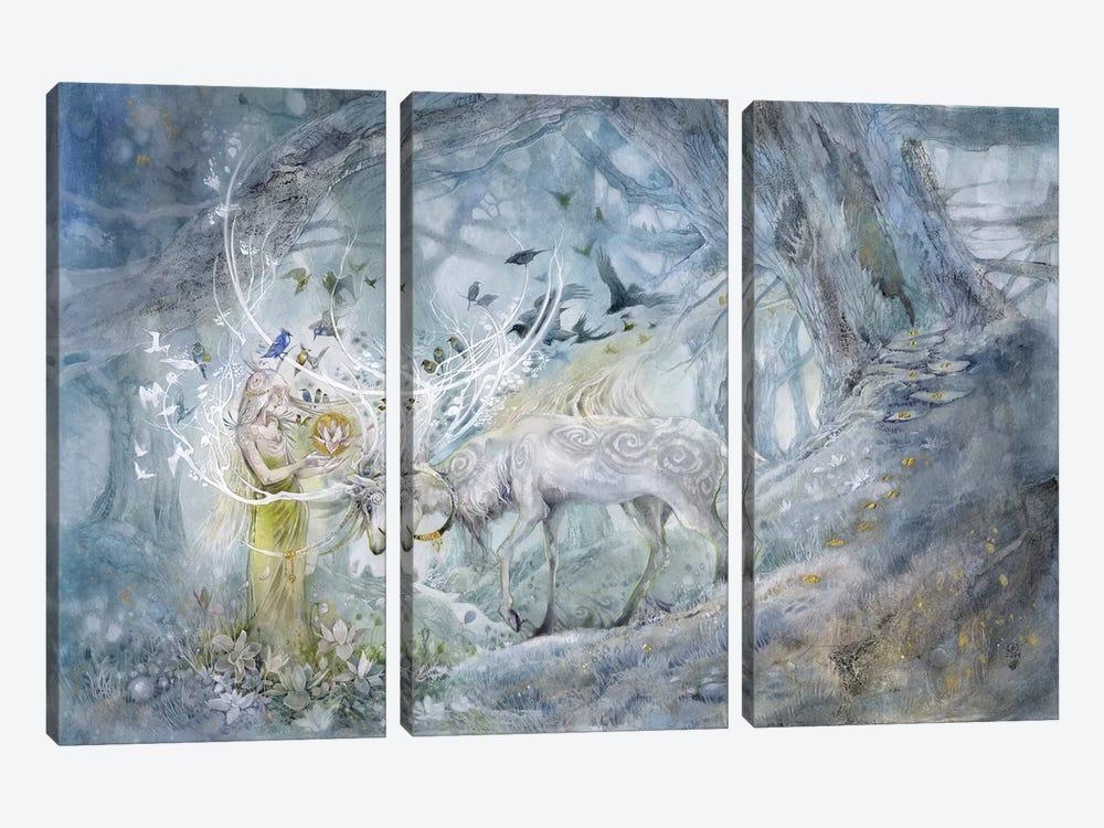 Resonance by Stephanie Law 3-piece Canvas Art