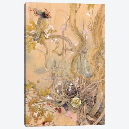 Rootbound Canvas Print #SLW132} by Stephanie Law Canvas Print