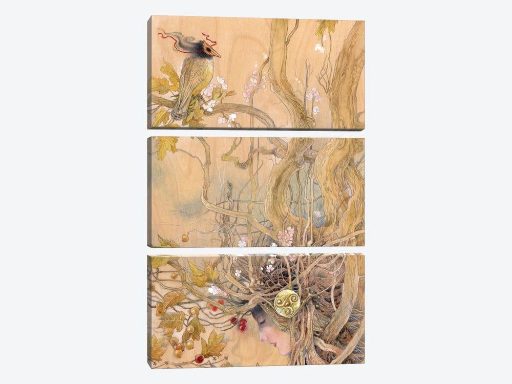 Rootbound by Stephanie Law 3-piece Canvas Print