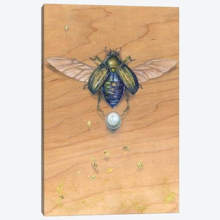 Scarab III Canvas Print #SLW135} by Stephanie Law Canvas Artwork