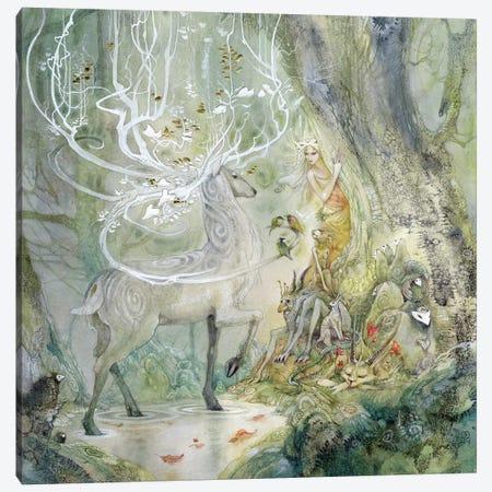 Scherzando Canvas Print #SLW136} by Stephanie Law Canvas Wall Art