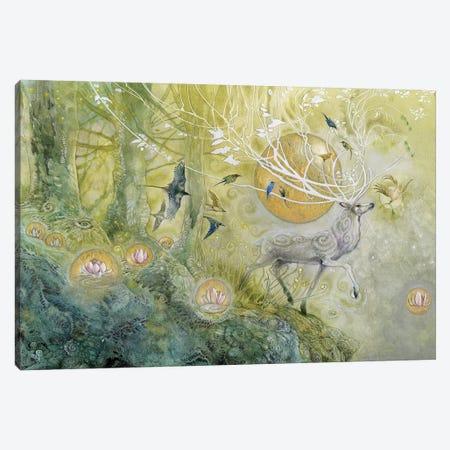 Allegro Canvas Print #SLW13} by Stephanie Law Canvas Art Print