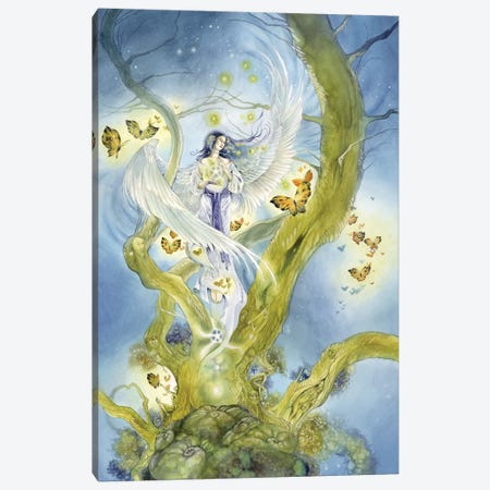 Star Canvas Print #SLW143} by Stephanie Law Canvas Artwork