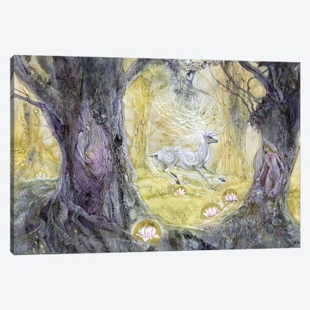 Tranquilo Canvas Print #SLW156} by Stephanie Law Canvas Wall Art