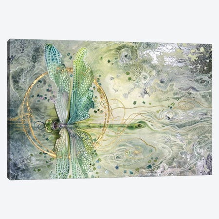 Transition Canvas Print #SLW159} by Stephanie Law Canvas Print