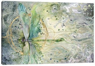 Transition Canvas Art Print