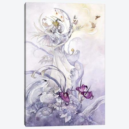 Truthseeker Canvas Print #SLW161} by Stephanie Law Canvas Wall Art