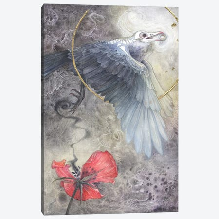 Value Of A Pearl Canvas Print #SLW166} by Stephanie Law Canvas Print