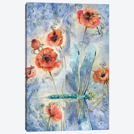 When Flowers Dream - Dragonfly Canvas Print #SLW172} by Stephanie Law Canvas Print