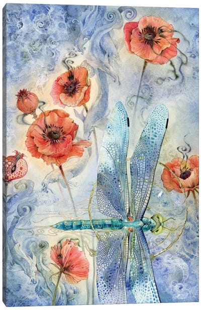 When Flowers Dream - Dragonfly Canvas Art Print