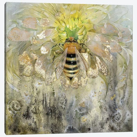 Bee Canvas Print #SLW18} by Stephanie Law Art Print