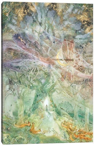 Convergence I Canvas Art Print