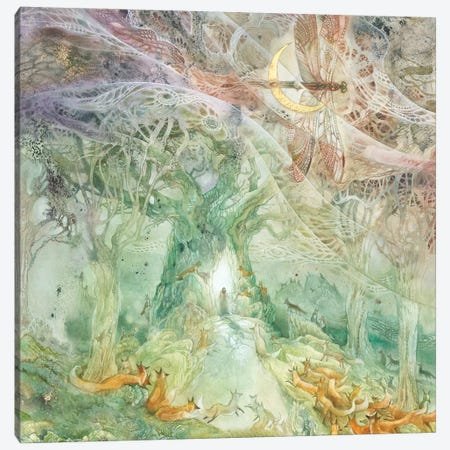 Convergence II Canvas Print #SLW198} by Stephanie Law Canvas Print