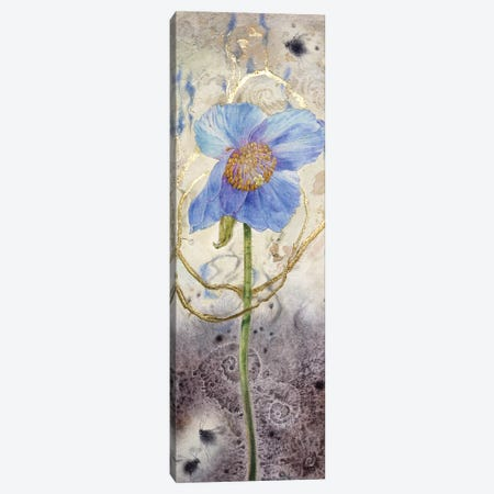 Blue Poppy Canvas Print #SLW21} by Stephanie Law Canvas Wall Art