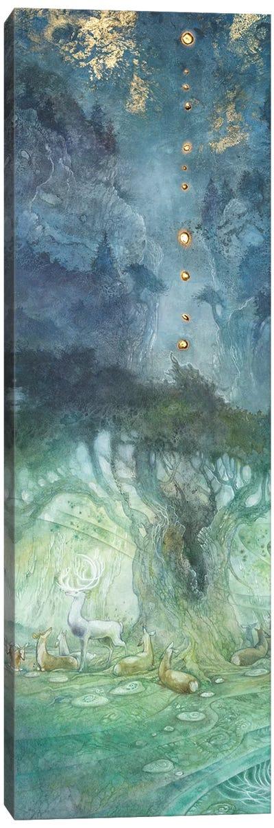 Origin Of The Spark I Canvas Art Print