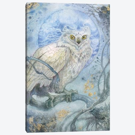 Night Wings III Canvas Print #SLW232} by Stephanie Law Canvas Artwork