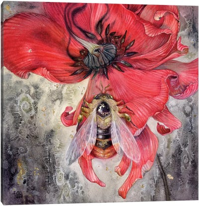 Bumblebee Canvas Art Print