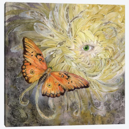 Butterfly Canvas Print #SLW24} by Stephanie Law Canvas Print