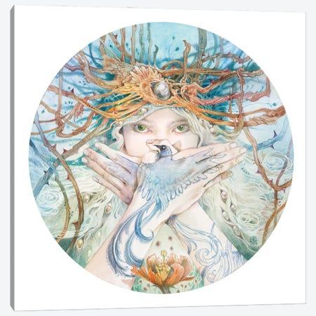 Mosaic - Gaze Canvas Print #SLW255} by Stephanie Law Canvas Print