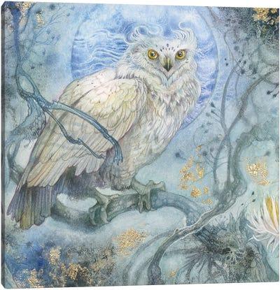 Moonlit Forest Canvas Art Print