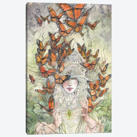 Cats Cradle Canvas Print #SLW27} by Stephanie Law Canvas Print