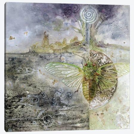 Cicada Canvas Print #SLW30} by Stephanie Law Canvas Print
