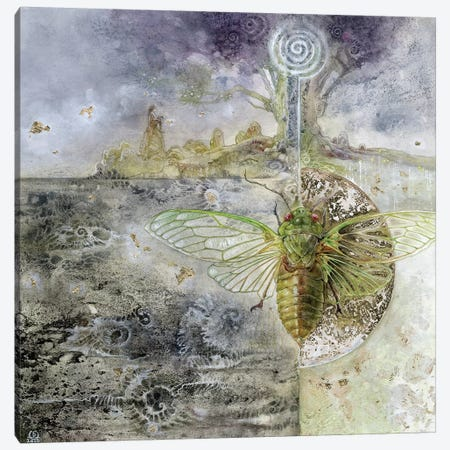 Cicada Canvas Print #SLW30} by Stephanie Law Canvas Print