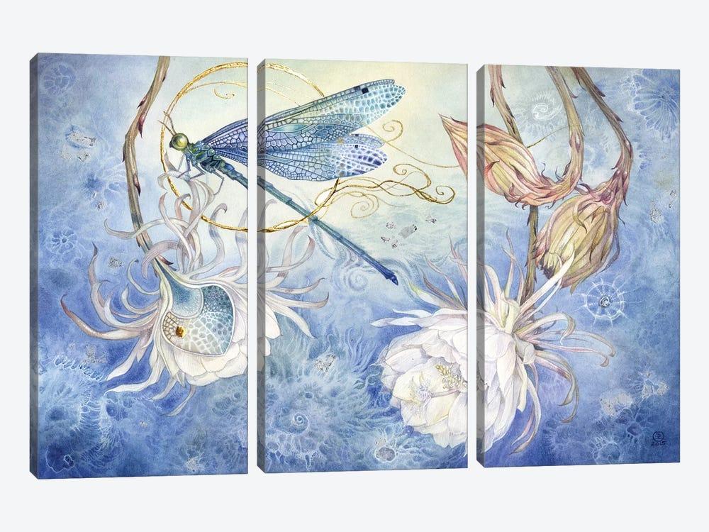 Damsel Fly III by Stephanie Law 3-piece Canvas Art Print