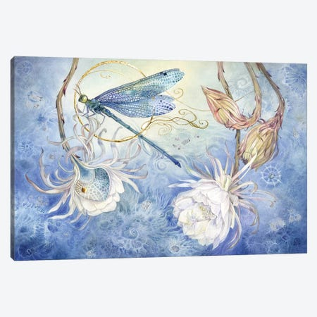 Damsel Fly III Canvas Print #SLW35} by Stephanie Law Canvas Artwork