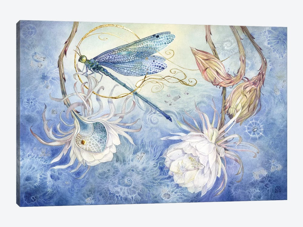 Damsel Fly III by Stephanie Law 1-piece Canvas Print