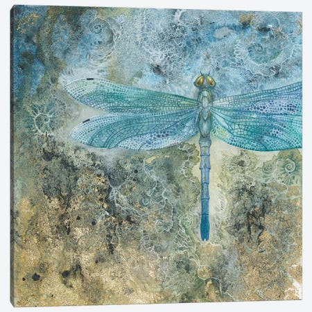Dragonfly I Canvas Print #SLW44} by Stephanie Law Canvas Print