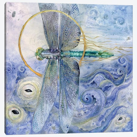 Dragonfly II Canvas Print #SLW45} by Stephanie Law Canvas Print
