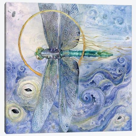 Dragonfly II Canvas Print #SLW45} by Stephanie Law Canvas Print