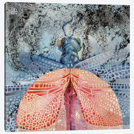 Dragonfly IV Canvas Print #SLW47} by Stephanie Law Canvas Art Print
