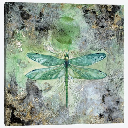 Dragonfly V Canvas Print #SLW48} by Stephanie Law Canvas Art