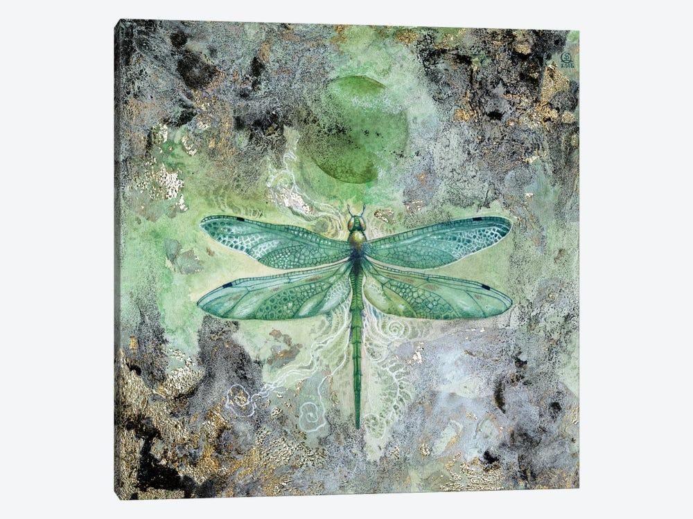 Dragonfly V by Stephanie Law 1-piece Canvas Print