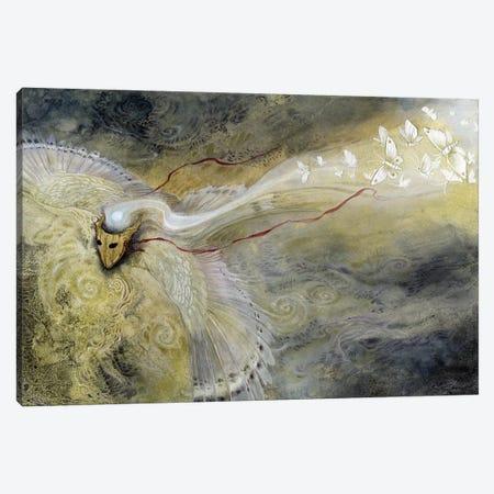 Drawn To The Light Canvas Print #SLW52} by Stephanie Law Art Print