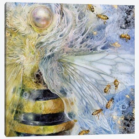 Essence Bee 3-Piece Canvas #SLW61} by Stephanie Law Canvas Wall Art