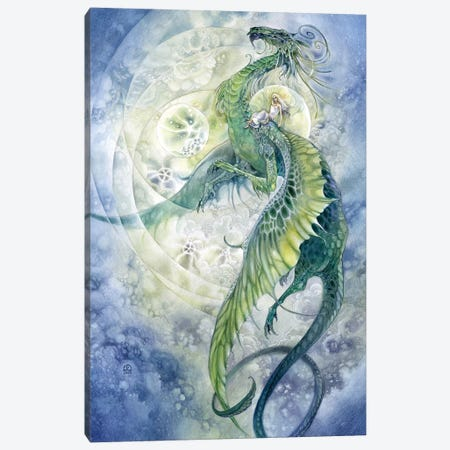 Flight Canvas Print #SLW69} by Stephanie Law Canvas Wall Art