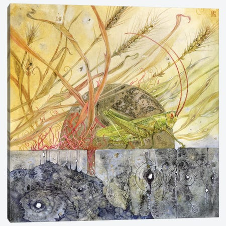 Grasshopper Canvas Print #SLW76} by Stephanie Law Canvas Wall Art