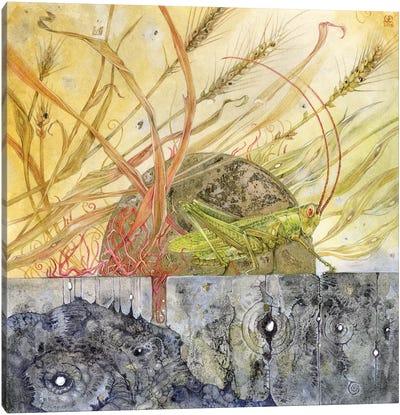 Grasshopper Canvas Art Print