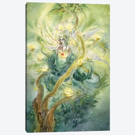Green Faerie Canvas Print #SLW77} by Stephanie Law Canvas Wall Art