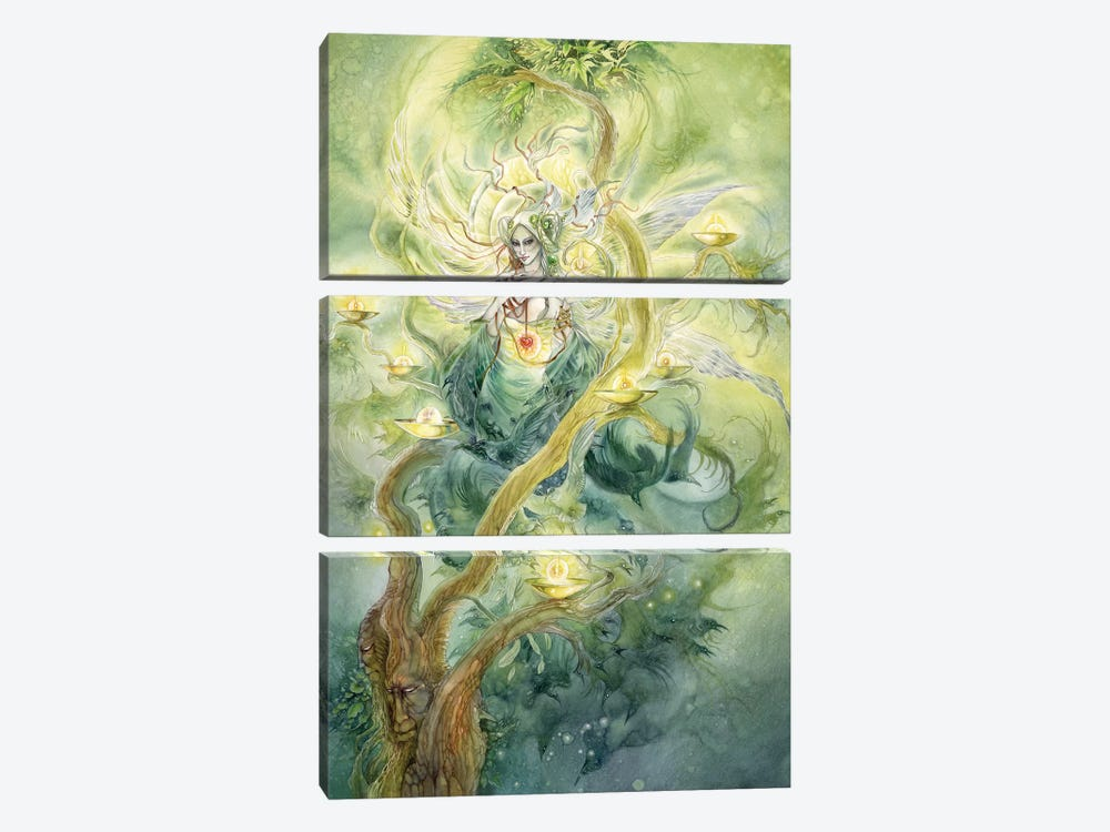 Green Faerie by Stephanie Law 3-piece Canvas Art Print