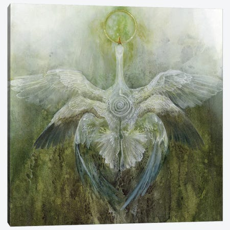 Green Flash Canvas Print #SLW78} by Stephanie Law Art Print