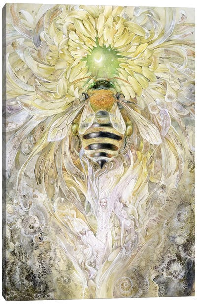 Honeybee II Canvas Art Print